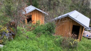 Photo: CNN Cummins and Elizabeth stayed in one of these cabins in Cecilville, California, this week, the property's caretaker told CNN affiliate KOBI.