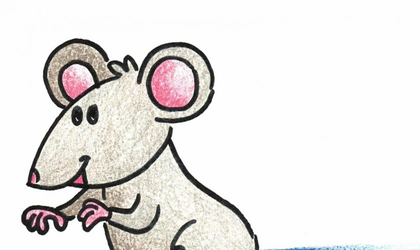 MOUSE (1)